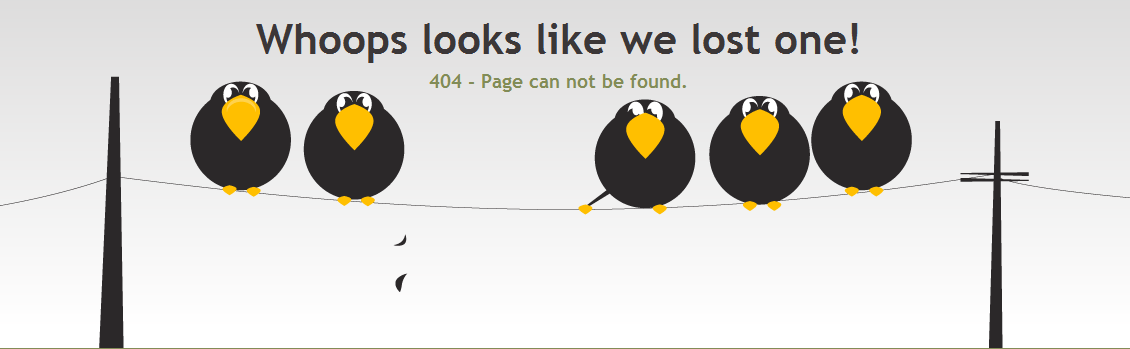 Why 404?